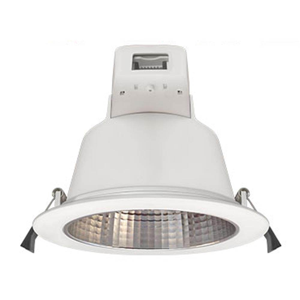 Plato LED Downlight